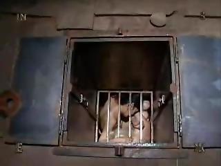 20030816 - No Escape (angelica, 731)