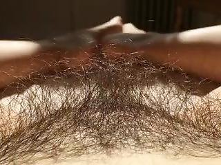 Pussy Hair 2