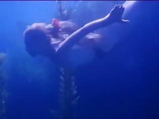 The Mermaids Of Tiburon-3