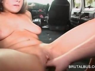 sucking dick on school bus
