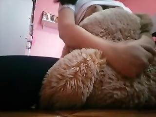 Young Girl Humping On A Bear