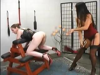 Natali Demore Dominates A Cute Slave