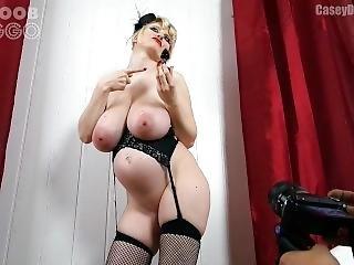 anal, gros téton, blonde, allemande, star du porno, preggo, sexe