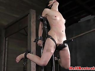 Chained Sub Punished With Analplay