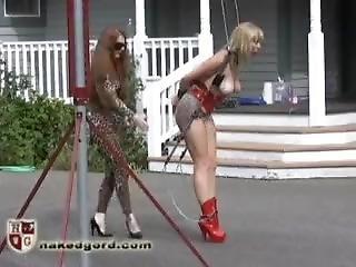 bondage, rabo, estrela porno