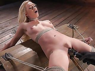 Hot Blonde Lyra Law Is Bound