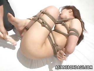 Amateur, Asiatisch, Arsch, Bdsm, Schön, Sklaverei, Titte, Busch, Vollbusig, Arsch, Süss, Ficken, Japanisch, Orgasmus, Orientalisch, Festgebunden