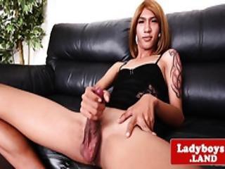 Glamorous Ladyboy Teases And Wanks Her Cock