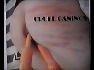 Cruel Canings