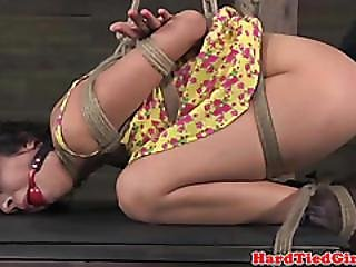 Bdsm, Bondage, Brunette, Domination, Fetish, Kinky, Pussy, Rough, Sex, Skank, Spanking, Spreading, Submissive