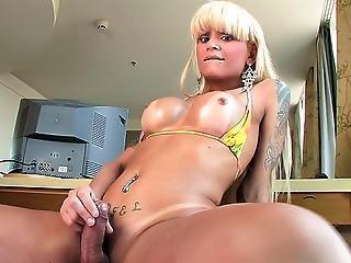 She Male Xtc 097