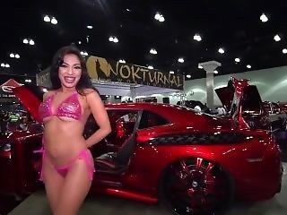 Import Nights Sexy Glamour Models & Grid Girls Mv 2017