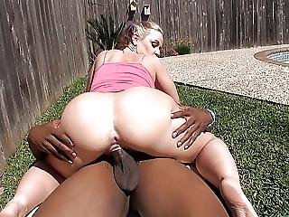 Backyard Bbc