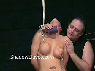 Busty Danii Blacks Nipple Tortures And Big Tit Clamping