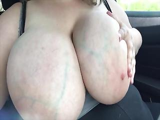 Tits Out Forest Preserve Parking Lot