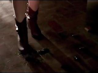 American Horror House Cockroach Stomps