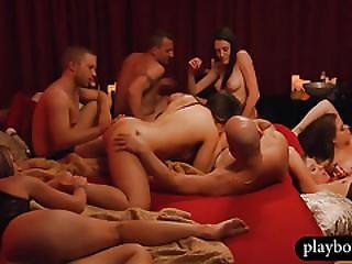 Amateur Swingers Let Loose In An Orgy At The Swingers House