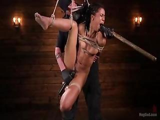 action, anal, cul, black, bottes, attachée, campagne, sombre, fétiche, pied, gay, gothique, chapeau, attachée comme une truie, dentelle, nerd, insertion d'objets, vieux, oral, orgasme, publique, brusque, sexy, baise sur table, au travail