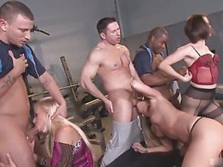 Bobbi Starr, Amy Brooke, And Carla Cox Came To The Gym To Try