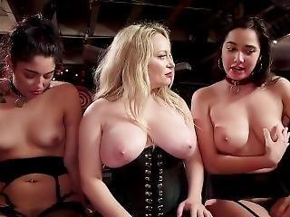 анальный, БДСМ, большая синица, блондинка, рабство, брюнетка, кончил, фетиш, партия, порнозвезда, довольно, раб, маленькая грудь
