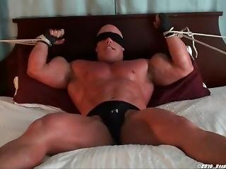 Brad Hollibaug: Muscle Bound Alt 4