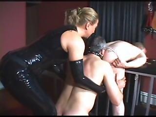 Forced bi sexual videos