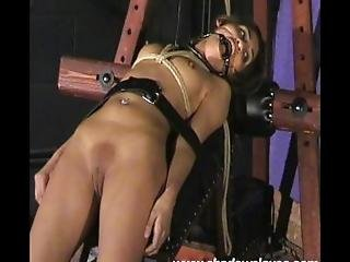 Sahara Knites Bizarre Bondage And Nude Indian Fetish Models Extreme Bdsm