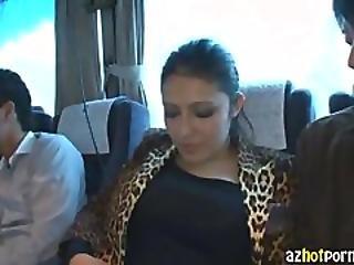 Azhotporn.com   Bus Tour Fan Thanksgiving 2011 Jungle