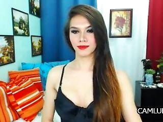 Sexy Thai Transexualladyboy