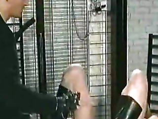 bdsm, bondage, αυταρχικό, femdom, μουνί, pussylips, σκληροτράχυλο, δούλος