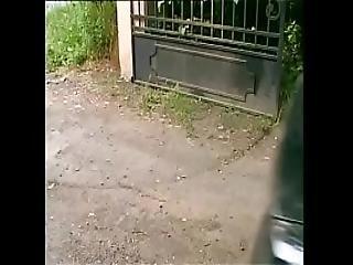 --fmvideo Version En Espanol566 1