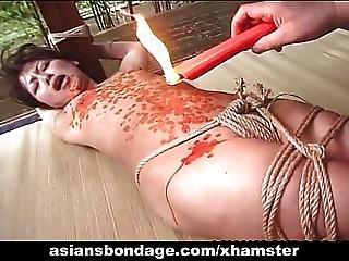 활동, 아시아의, SM, BD, 일본의, 밀랍