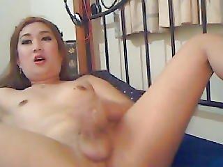 Nice-looking Oriental Lady-boy Jerks Her Pecker