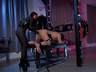 Mistress Susi Strapon