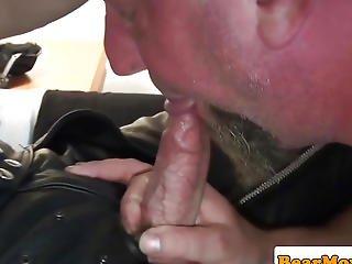 Cocksucked Bear Arse Banging Obese Bottom