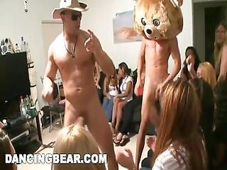 Dancingbear   Special Delivery For College Girls %28db6292%29