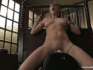 Cute Ravishing Chick Charlie Laine Bound And Drilled By Machine