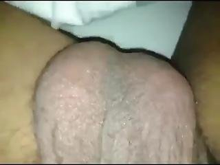 Pussy And Cock