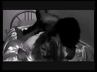 Nicola Baker - Antlers Of Reason