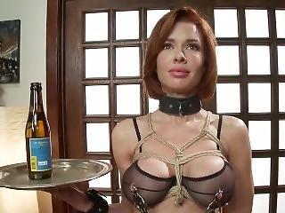 anaal, bdsm, dikke tiet, slet, bondage, fetish, hardcore, milf, porno ster, ruw, sex