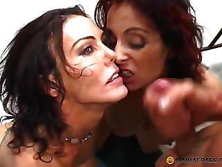 Two Beauties Cute Lick Dick