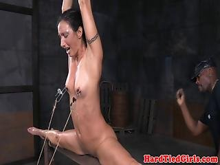 Restrained Sluts Flogged In Spreadeagle
