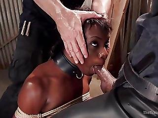 Bdsm, Black, Bondage, Ebony, Humiliation, Spanking, Whore