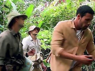 Jungle Tits