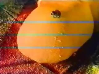 Monika - Stump Frog