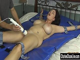 Charlee S Squirt-tastic Orgams