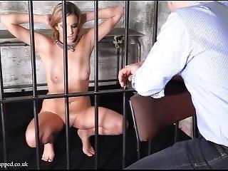 Slave303hourtrial1