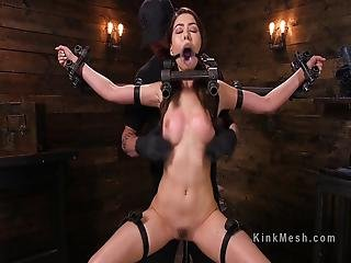Device Bondage Beauty Whipped