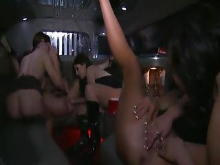 Amazing Gals Have Crazy Lesbie Sex Party Inside The Limousine