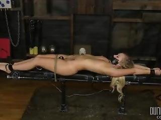 Bailey Brooke - Bdsm Split Legs - Bodacious Bailey Bratty In Bondage